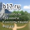 b17_100x100